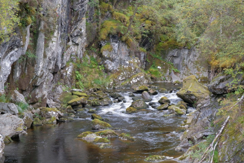 Rocks and water in Glen Affric